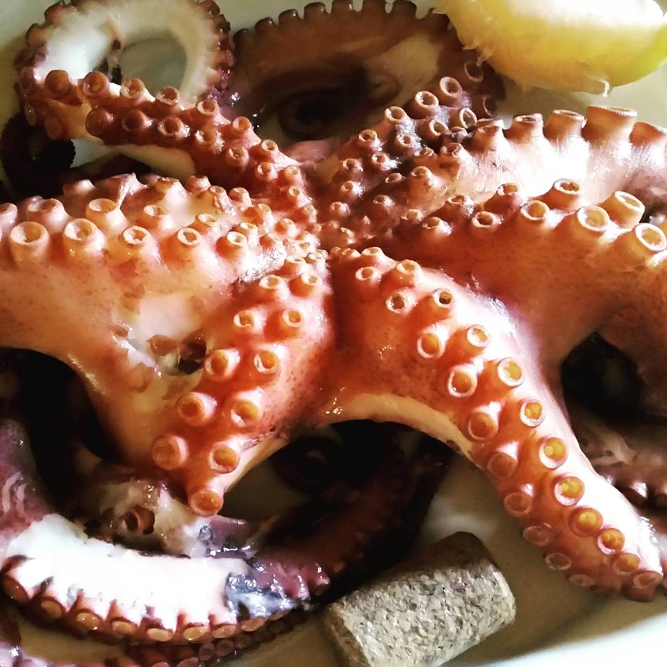 Owoce morza - skarb Toskanii
